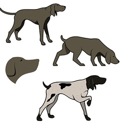 set hunting dogs vector image