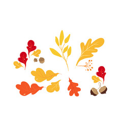 set red orange and yellow autumn and fall oak vector image