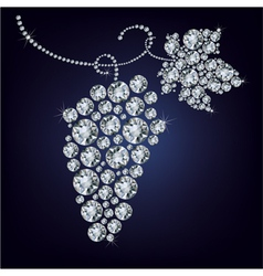 Wild grape made up a lot of diamond vector image