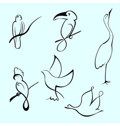 bird design set vector image