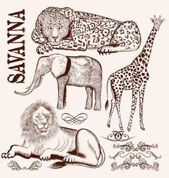 Collection of hand drawn savanna animals vector