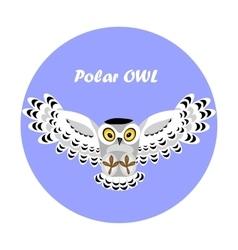 Flying polar owl vector
