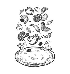 pizza with flying ingredients sketch vector image