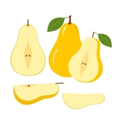 Ripe Juicy Pear Fruit and Slices on a White vector