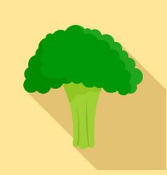 salad broccoli icon flat style vector image