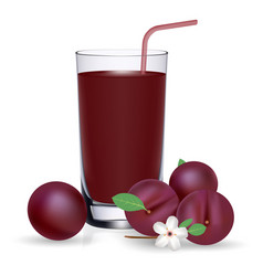 Set of plum juice and fresh ripe fruits isolated vector