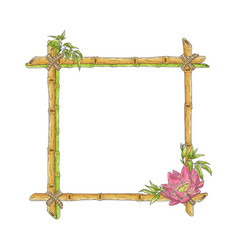 sketch bamboo frame with lotus flower vector image
