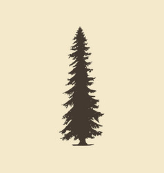 spruce hand drawn silhouette sketch of vector image