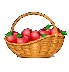 wicker basket filled with ripe red apples isolated vector image