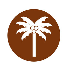 round icon beach palm cartoon vector image vector image