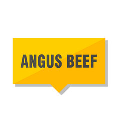 Angus beef price tag vector