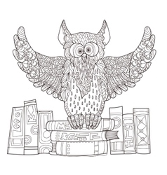 Owl on books vector