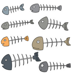 set of fishbone vector image