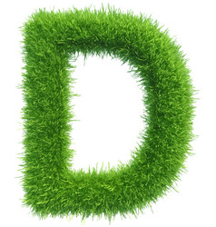 capital letter d from grass on white vector image vector image