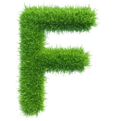 capital letter f from grass on white vector image vector image