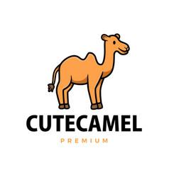 cute camel cartoon logo icon vector image