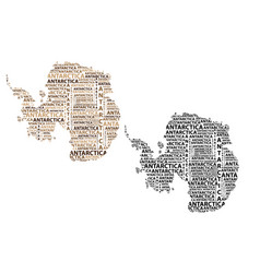 map of continent antarctica vector image