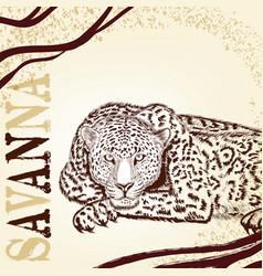 Savanna background with hand drawn leopard vector