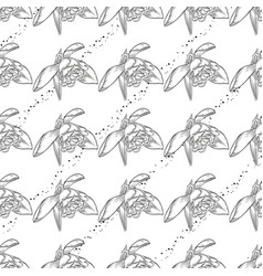 seamless pattern with snowdrops vector image