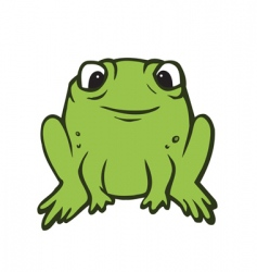 toad vector image vector image