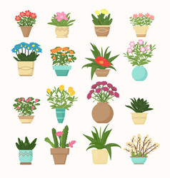 colorful set of flowers and vector image vector image