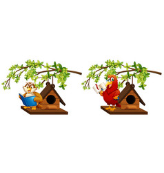 owl and parrot reading book in birdhouse vector image vector image