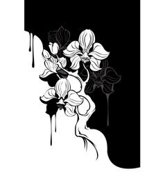 monochrome orchid vector image