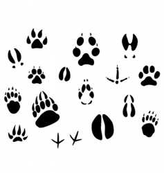 animal footprints vector image