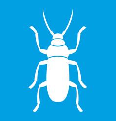 Beetle bug icon white vector