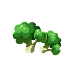 Broccoli bright color simple vector