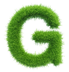 Capital letter g from grass on white vector