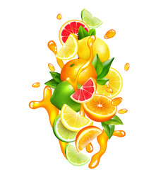 Citrus fruits juice drops colorful composition vector