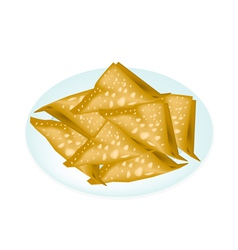 Deep Fried Wonton in A White Plate vector image vector image