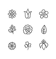 floral icon set flowers berry and leaves line art vector image