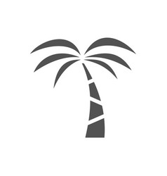 palm tree icon on a white background vector image