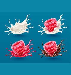 set of raspberry berries vector image