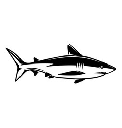 shark design elements for logo label emblem sign vector image
