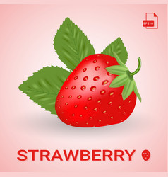 Single fresh ripe strawberry with leaves vector