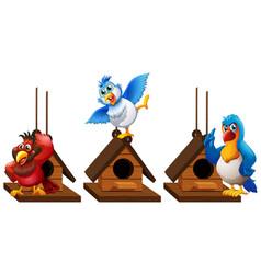 Three parrot macaw birds in birdhouse vector