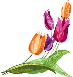 Tulips sketch vector