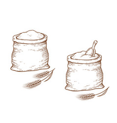 wheat and sack with flour vector image vector image