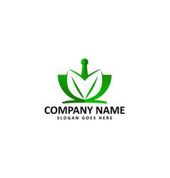 traditional medicine logo vector image