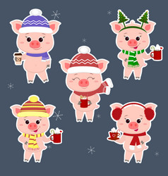 A set of five stickers of pigs in different hats vector