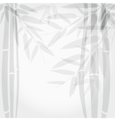 Bamboo trees on white background vector image