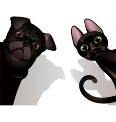 Funny cat and dog vector image