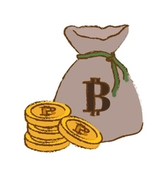Botcoin digital cash symbol in the bag vector
