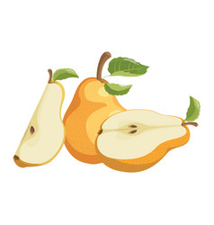 cartoon pear juicy sliced fruit drawing vector image