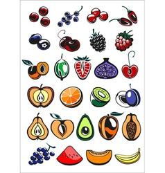 fruits and berry icons vector image