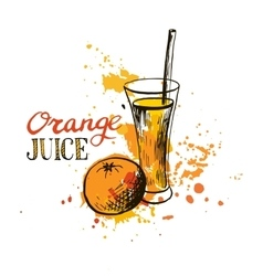 Hand drawn orange juice in glass vector