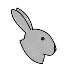 Rabbit animal icon vector